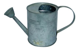Waterproof Metal Watering Cans for Garden (WC-A-16)
