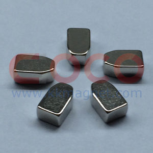 NdFeB Permanent Magnets with a Special Shape pictures & photos