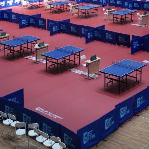 Indoor PVC Sports Roll Flooring for Table Tennis pictures & photos