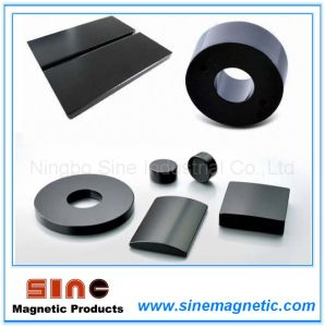 Strong Neodymium Magnet with Epoxy Coating pictures & photos