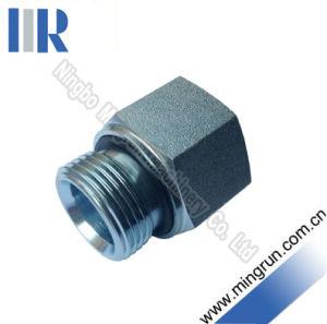 Bsp Male / Bsp Fixed Female Hydraulic Adapter Tube Fitting (5B-WD)