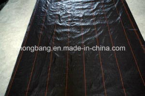 PP Woven Weed Barrier Ground Cover pictures & photos