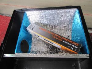 Asymmetrical Reflector E40 250W 400W Flood Lights pictures & photos