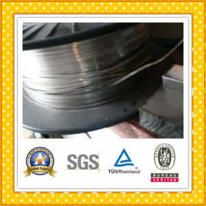 High Quality AISI 304 Ba Stainless Steel Strip pictures & photos