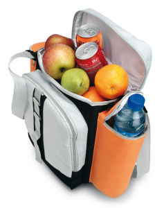Promotional Cooler Bag pictures & photos