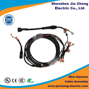 Electrical Wire Harness Cable Assembly Male to Female Custom Made pictures & photos