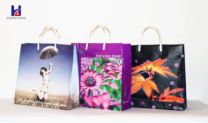 Non-Woven Shopping Bag of Sell Like Hot Cakes pictures & photos