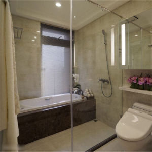 Large Safety Shower Door Glass pictures & photos