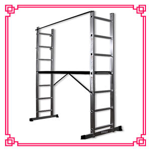 Aluminum Scaffolding Ladder 2X7 with Wheels and Handrail (DLSL102) pictures & photos