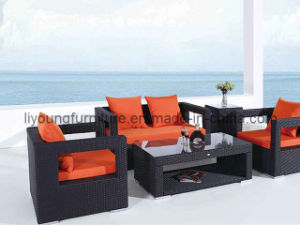 Modern Synthetic Outdoor Sofa Set (LG-S--169)
