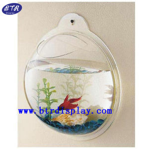 Mini Galss Fish Bowl Acrylic Wall Mount Fish Bowl (BTR-S2028) pictures & photos