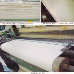 Ply Cotton_Nylon Belt pictures & photos