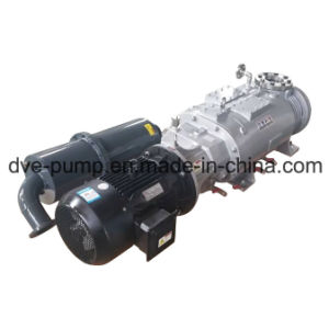 Varying Pitch Screw Dry Pump for Chemical Industrial Vacuum Distillation pictures & photos