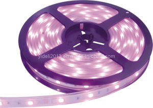 Silicone Cover 3528 30PCS/M 12V Strip LED Rope Ribbon Lighting pictures & photos