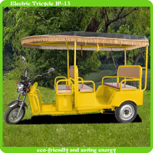 2014 New Model Electric Pedal Tricycle with Passenger Seat