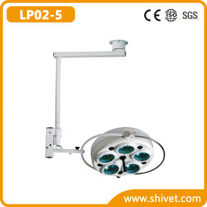 Veterinary Cold Light Operating Lamp (on stand) (LP02-5) pictures & photos