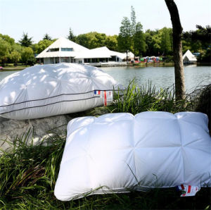Hot Sell Cotton Handmade Pillow Comforter Alternative Pillow pictures & photos