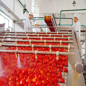Tomato Paste Making Machine, Fruit Juice Production Line pictures & photos