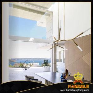 Gold Metal Modern Decorative Pendant Lamp pictures & photos