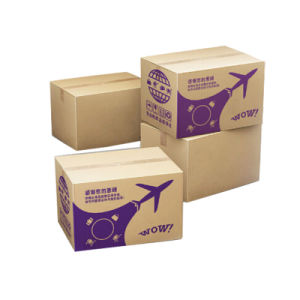 Shipping Cardboard Paper Box pictures & photos