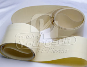 PTFE Coated Glass Fabrics pictures & photos