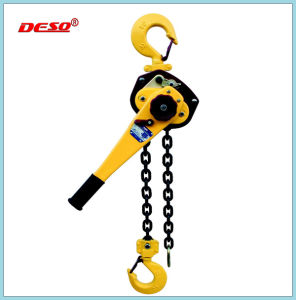 Manual or Lever or Electric Lifting Chain Block pictures & photos