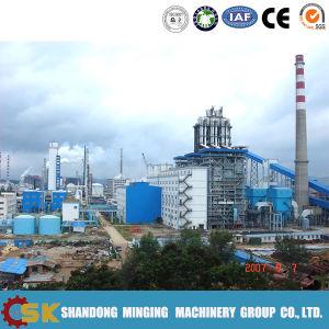 Belt Conveyor for Power Plant (B800-B2400)