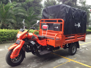 South America Good Quality Motor Tricycles for Transportation pictures & photos