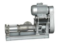 GCN Marine Mono Screw Pump pictures & photos
