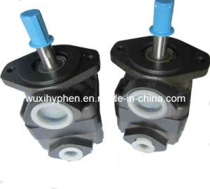 Small Displacement of Vane Pumps V10 Series pictures & photos