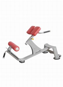 Precor Bodybuilding Equipment / Back Extension pictures & photos