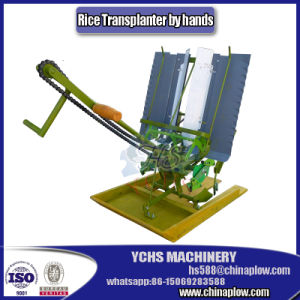 Manural Rice Transplanter pictures & photos