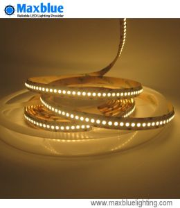 DC12/24V SMD 3528 Flexible LED Strip/ LED Strip Light pictures & photos