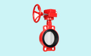 Grooved (Clamp) Butterfly Valve