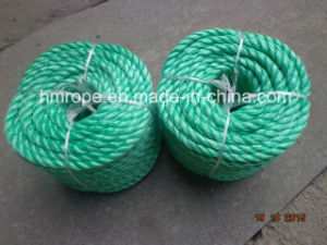 PP Splitfilm 3 Strands Twisted Rope pictures & photos
