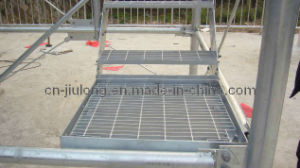 Stair Treads Steel Ladder with CE Certificate pictures & photos