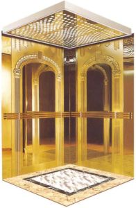 Home Hydraulic Villa Elevator with Italy Gmv System (RLS-143) pictures & photos