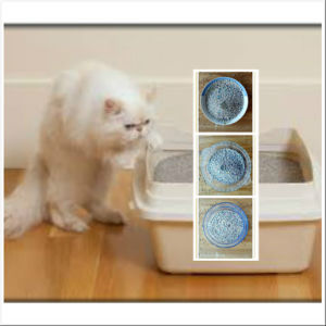 2016 New Pet Supply Purified Air Bentonite Cat Litter