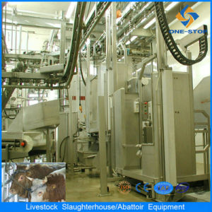 CE Standard Cow Slaughter Line for Cattle Abattoir pictures & photos