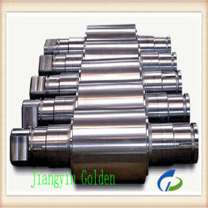 Ss630 Stainless Steel Forged Worm Shaft pictures & photos