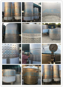 Stainless Steel Probiotic Chemical Fermentation Tank (ACE-FJG-R6) pictures & photos
