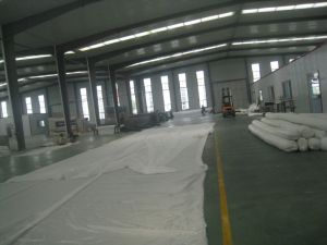 Woven Geotextile Polyester Geotube/Geobag for Bank Protection pictures & photos