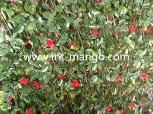 Artificial Leaves with Flowers Willow Hedge (MW16016) pictures & photos