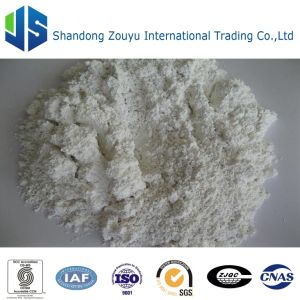 Washed & Calcined Kaolin pictures & photos