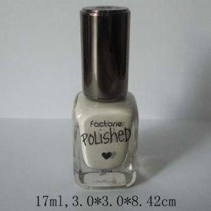 Np106 Long Lasting Quick Dry Nail Polish Nail Varnish
