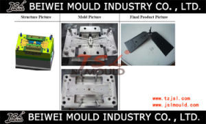 Medical Plastic Parts Injection Mould pictures & photos