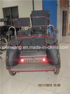 Steel Body Marathon Horse Cart (HC011-1#) pictures & photos