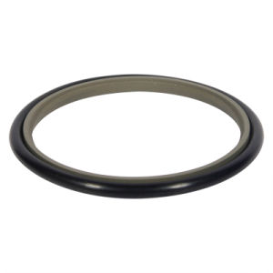 Teflon/PTFE Rod Seal for Cylinder pictures & photos