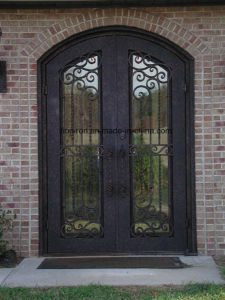 Custom Exterior Tempered Glass Door with Iron Designs pictures & photos