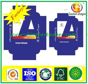 10 Reams Per Carton for Copy Paper pictures & photos